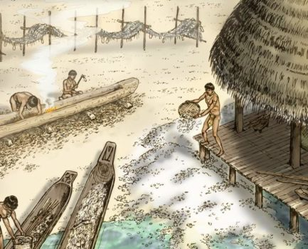 OCTOBER: Bob Austin, PhD of Alliance for Weedon Island Archaeological Research